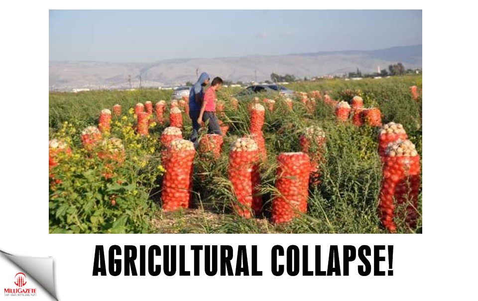 Agricultural collapse