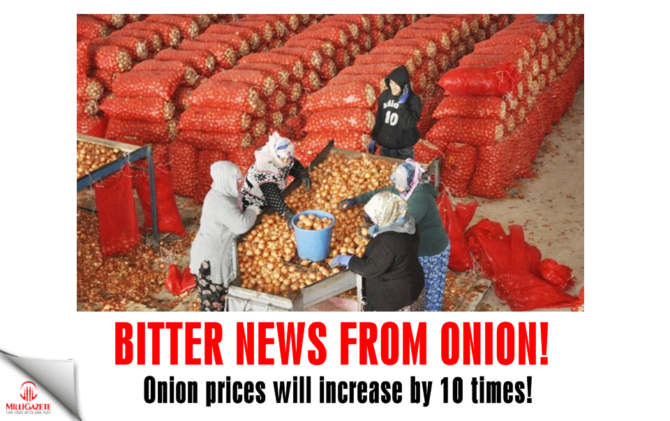 Bitter news from onion! Prices will increase by 10 times!