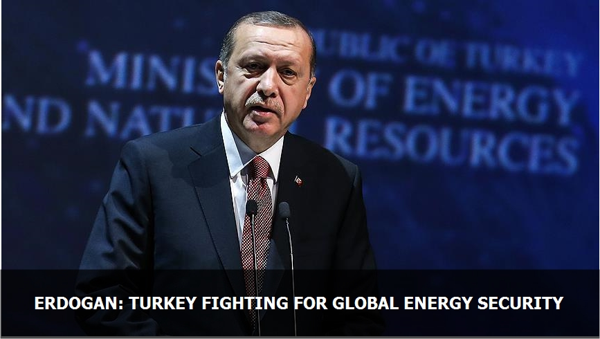 Erdogan: Turkey fighting for global energy security