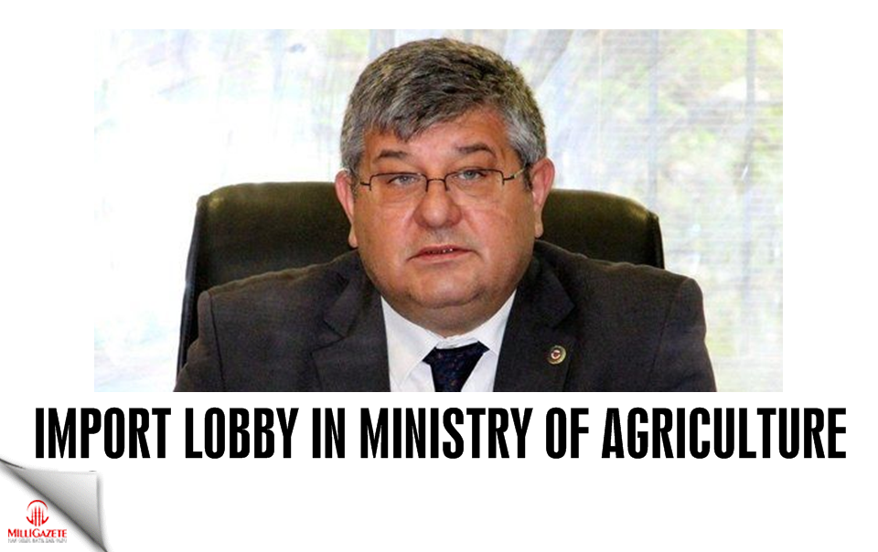 Import lobby in Ministry of Agriculture