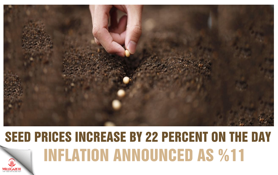 Seed prices increase by 22 percent on the day inflation announced as %11