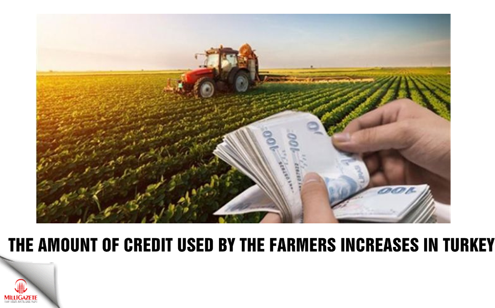 The amount of credit used by the farmer increases in Turkey