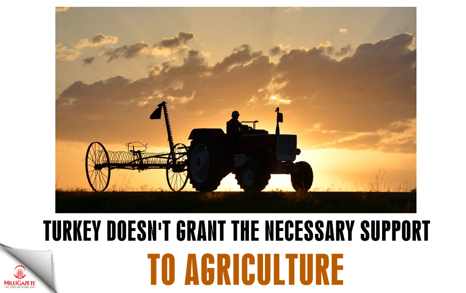 Turkey does not grant the necessary support to agriculture