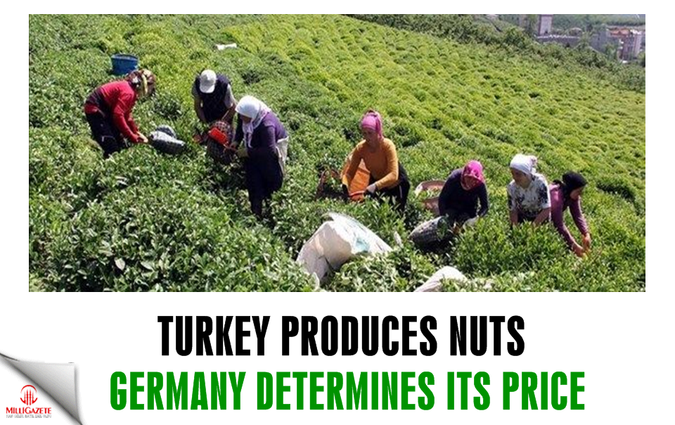 Turkey produces nuts, Germany determines its price