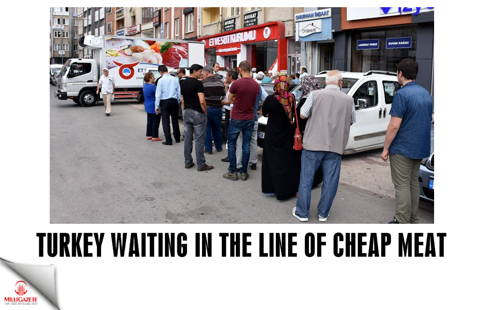 Turkey waiting in the line of cheap meat