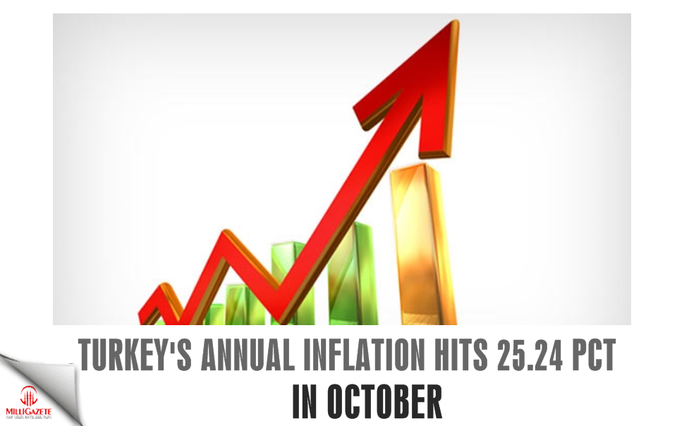 Turkey's annual inflation hits 25.24 pct in October