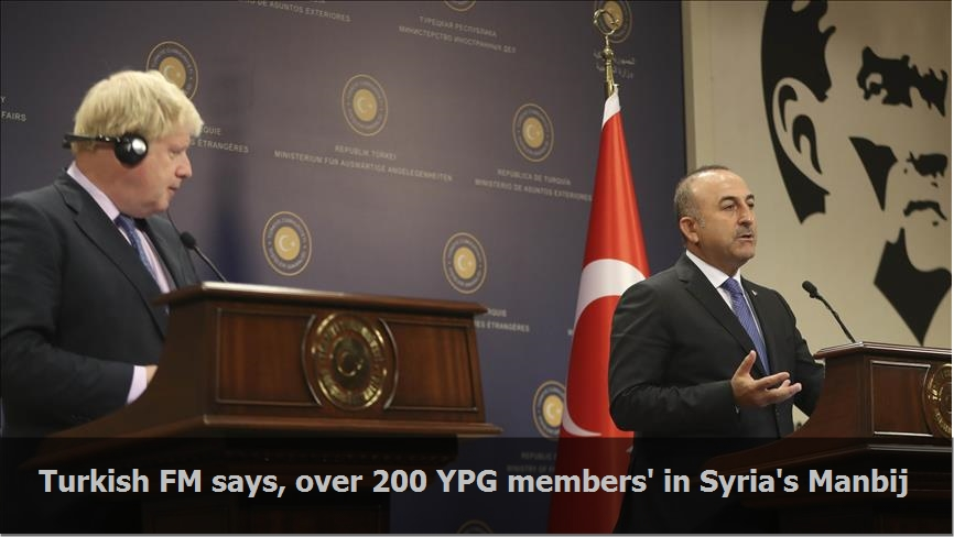 Turkish FM says, over 200 YPG members' in Syria's Manbij