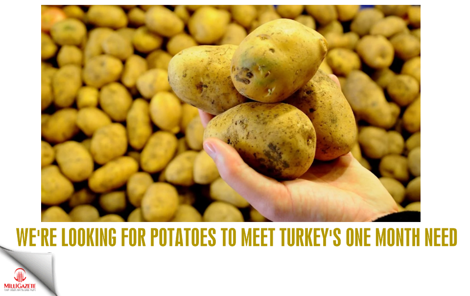 We'are looking for potatoes to meet Turkey's one month need