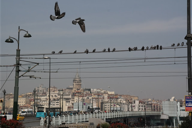 Here are some wonderful photo's of Istanbul