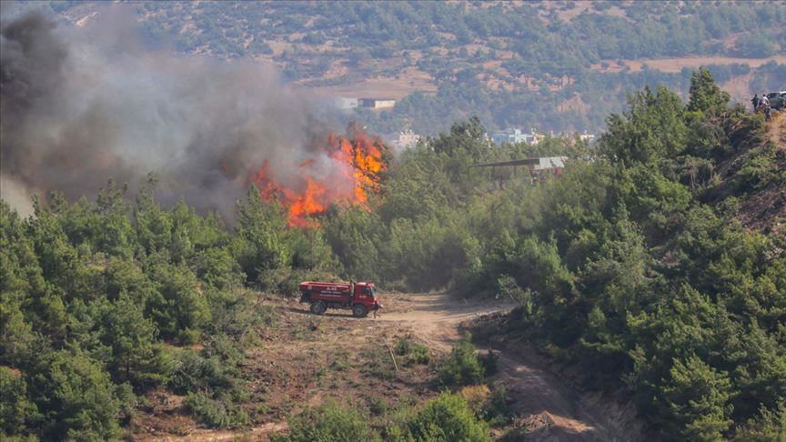 At least 10 injured in southern Turkey forest fires