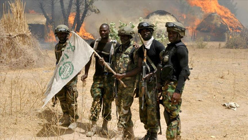 Boko Haram ambush kills 9 in NE Nigeria's Borno State