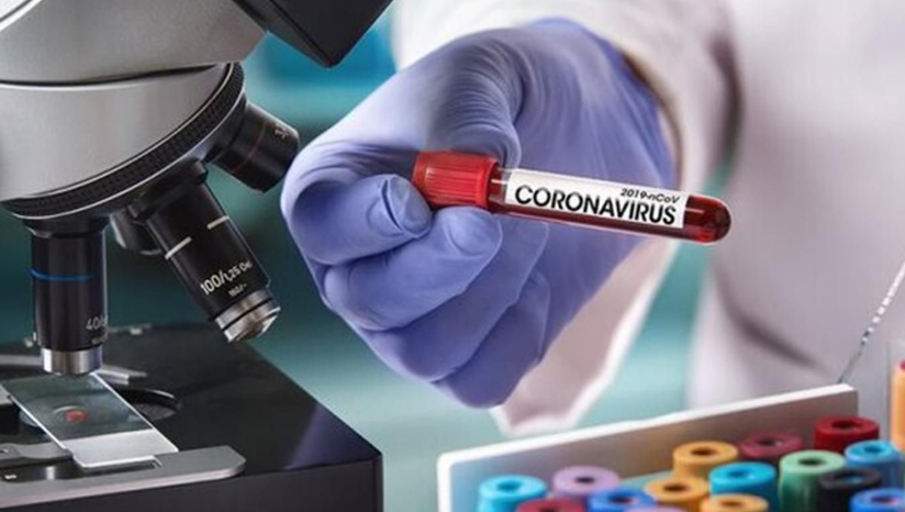 Coronavirus worldwide: The number of confirmed cases rises to 12M