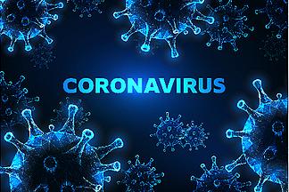 COVID-19 cases surpass 20 million globally
