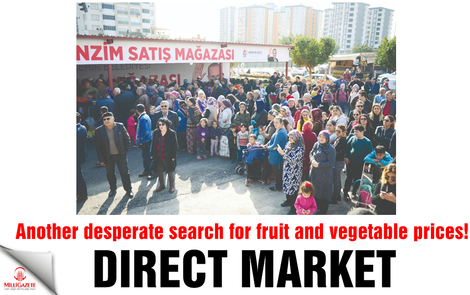 Direct market! Another desperate search for fruit and vegetable prices!