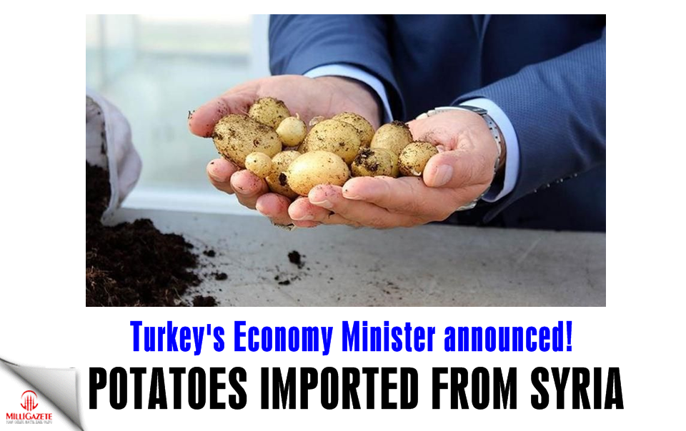 Economy Minister announced! Potatoes imported from Syria