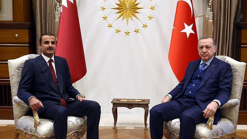Erdogan, Qatar emir discuss Afrin operation, Syria