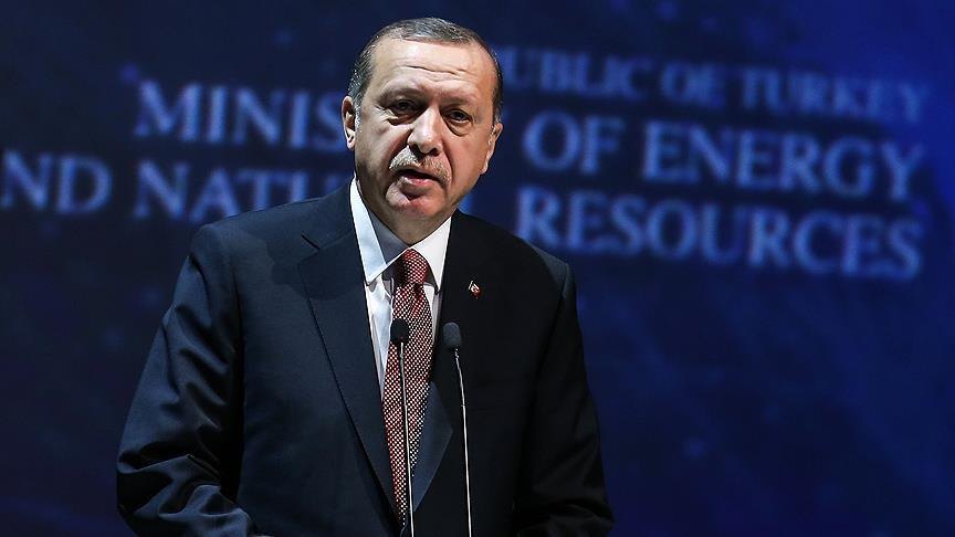 Erdogan: Turkey fighting for global energy security