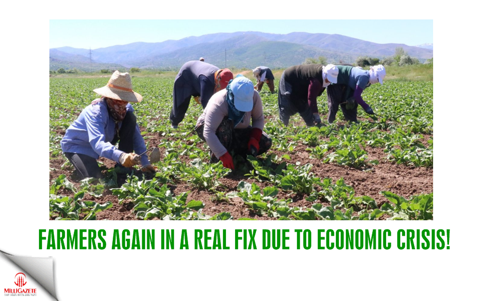 Farmers again in a real fix due to economic crisis!