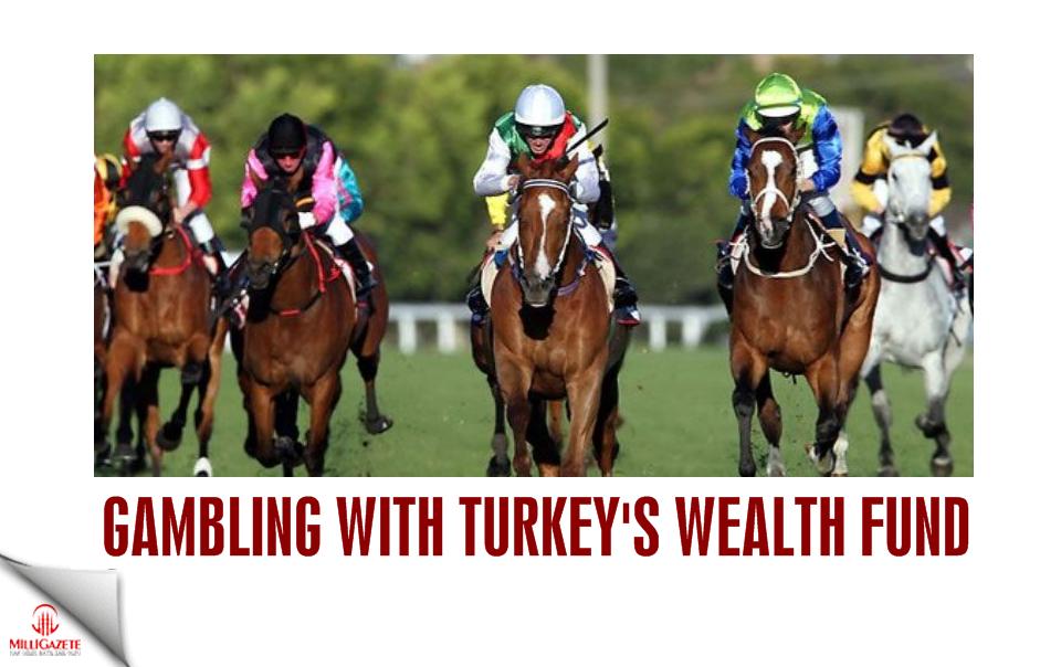 Gambling with Turkeys wealth fund