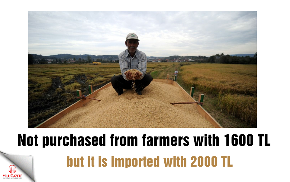 Not purchased from farmers with 1600 TL, but it is imported with 2000 TL