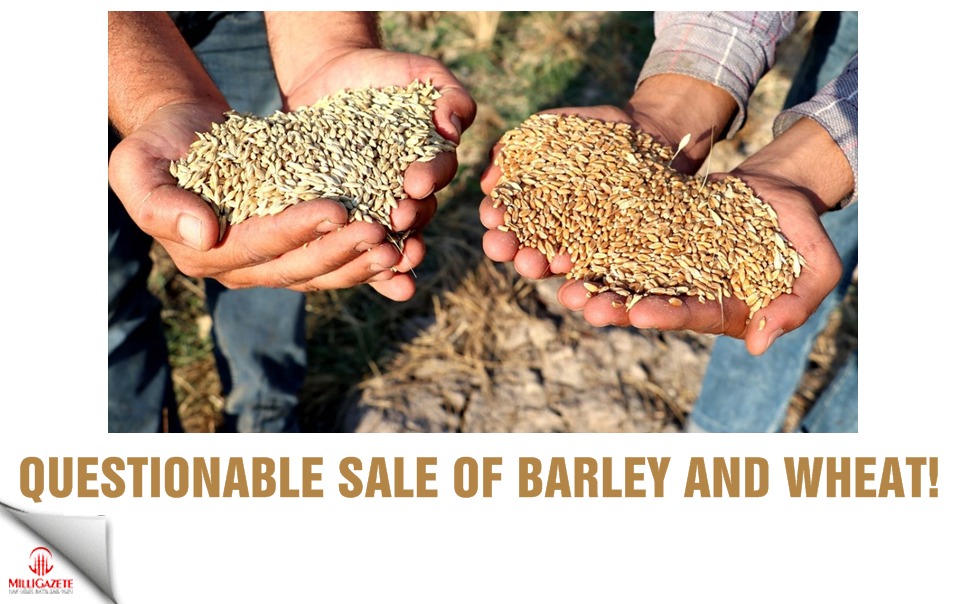 Questionable sale of barley and wheat!