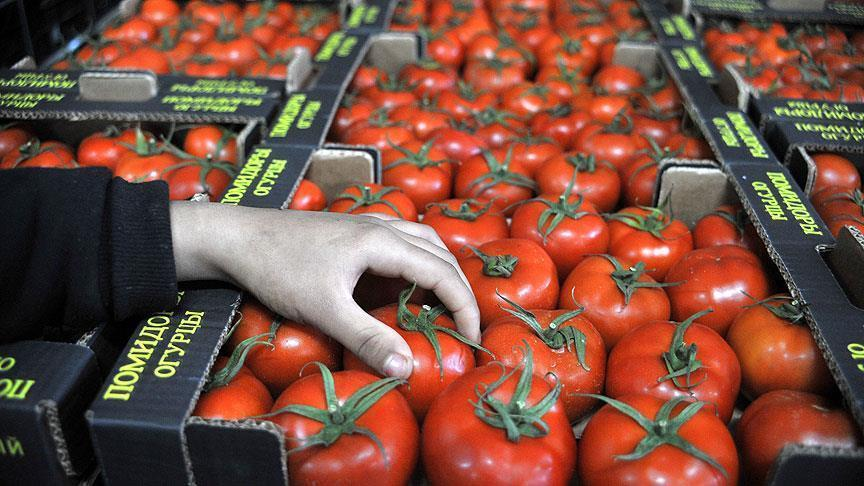 Russia lifts ban on import of Turkish tomatoes