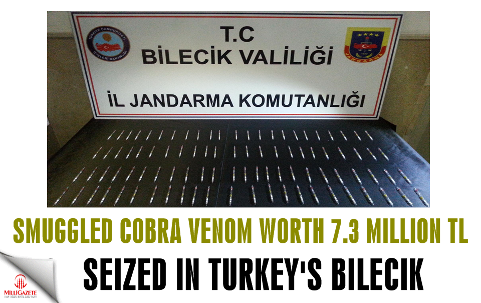 Smuggled cobra venom worth 7.3 million Turkish liras seized in Turkey's Bilecik