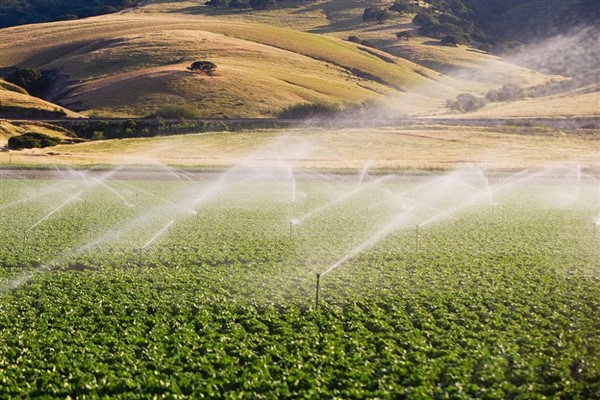 The farmer's water problem being solved