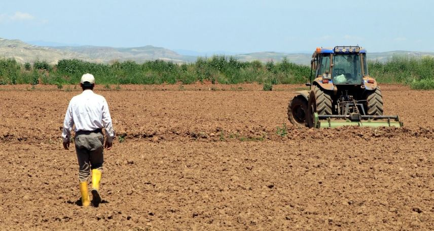 The loss of Agricultural Sales Cooperative turns into debt of the farmers