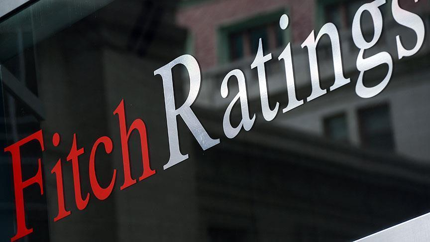 Turkey's economy to grow by 4.8% in next 5 years: Fitch