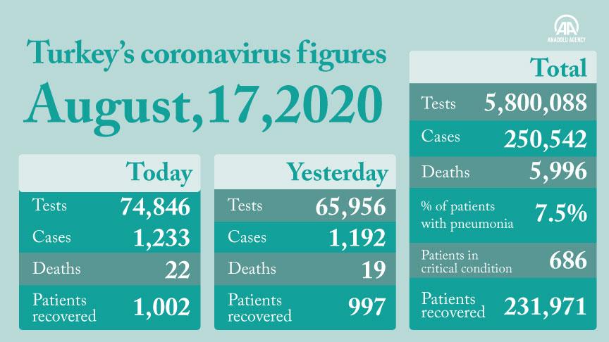 Turkey: Coronavirus cases top 250,000