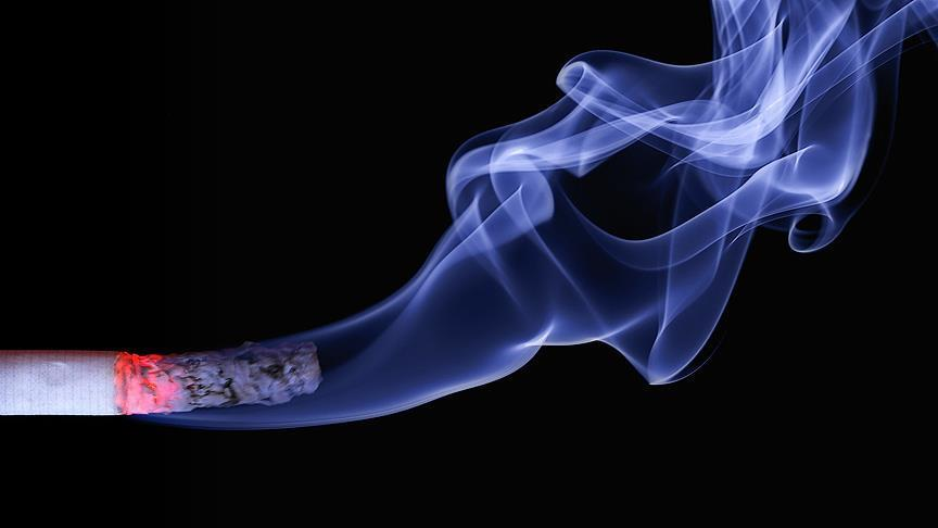 Turkey spent $154B on smoking over last decade