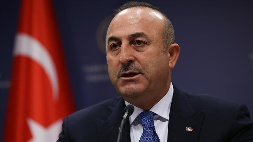 Turkish FM : US gives weapons to YPG
