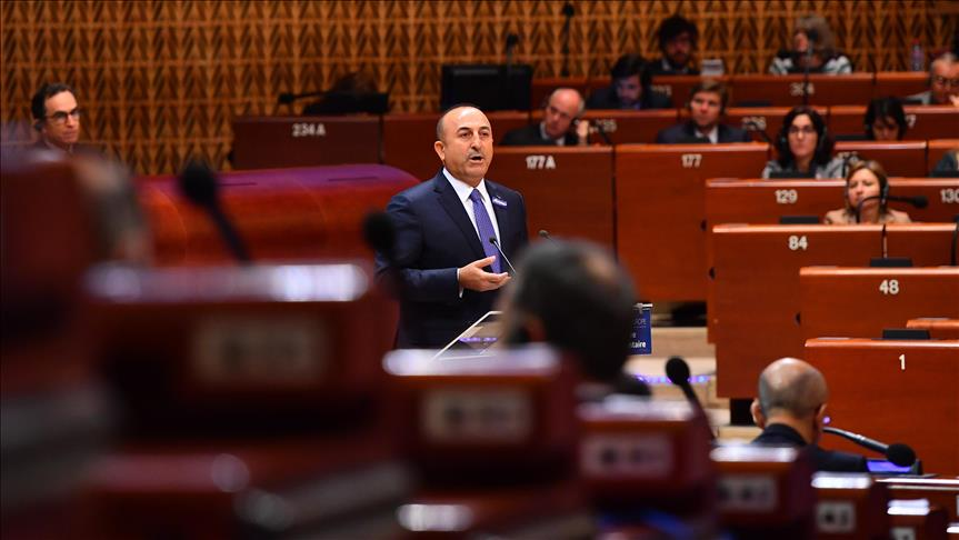 Turkish FM: Anti-FETO actions conform to human rights