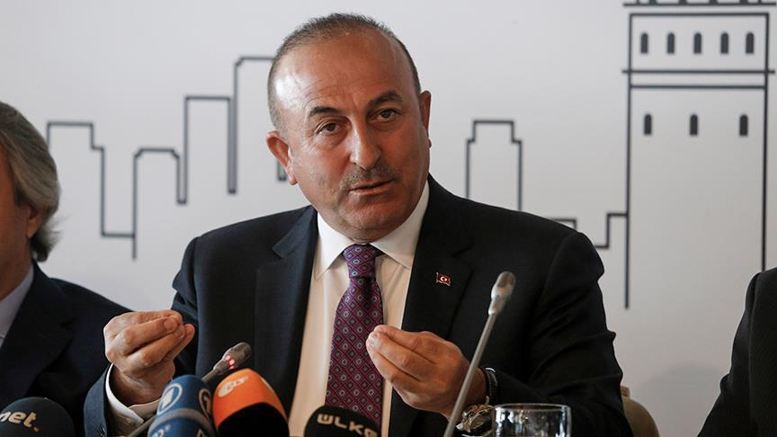 Turkish FM Cavusoglu denounces German rally bans