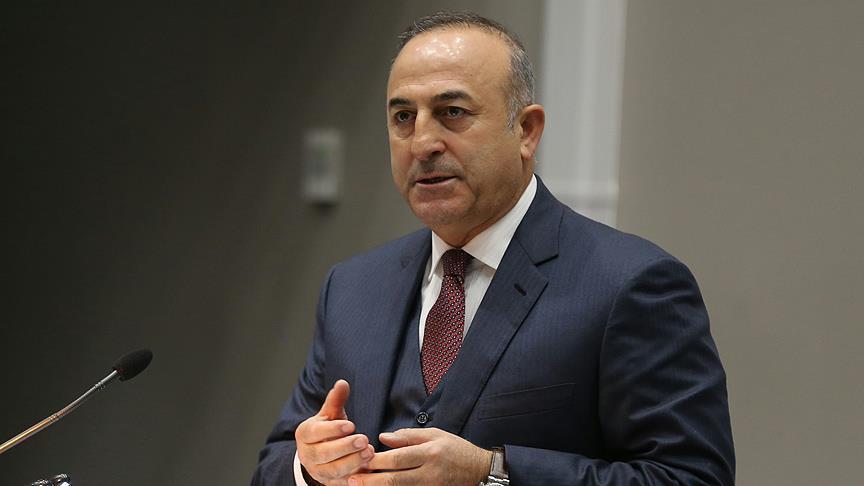 Turkish FM Cavusoglu: No Turkish journalist arrested for 'writing stories'