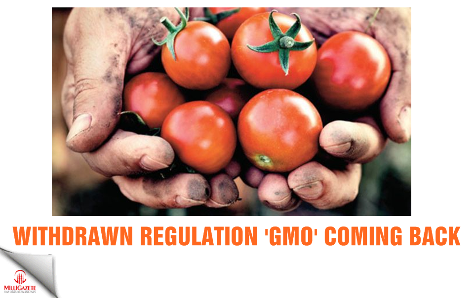 Withdrawn regulation GMO coming back