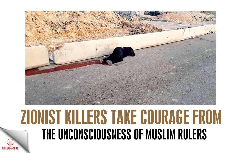 Zionist killers take courage from the unconsciousness of Muslim rulers